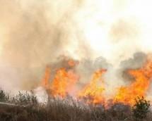 Пожар у Горњим Миоковцима