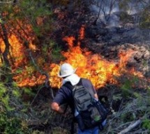 Пожар на Топаловом брду, једна особа погинула